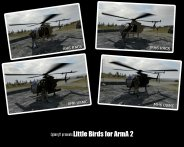 Little Birds ��� ArmA 2
